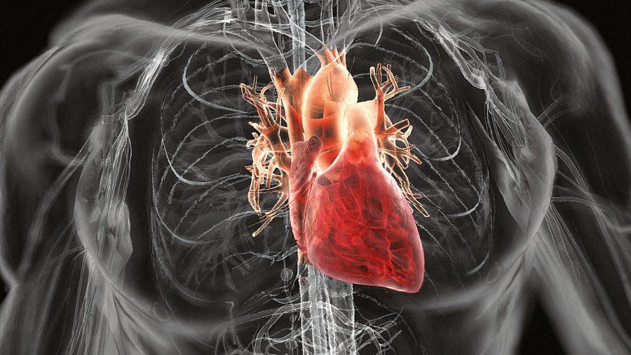 Почему сильно бьется сердце и тяжело дышать