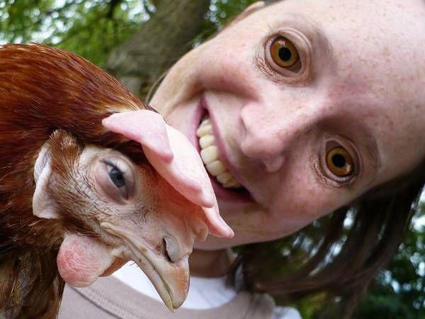 Самые смешные и ужасные фото с обменом лиц