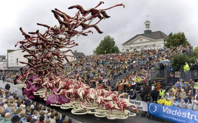 Zundert floral parade