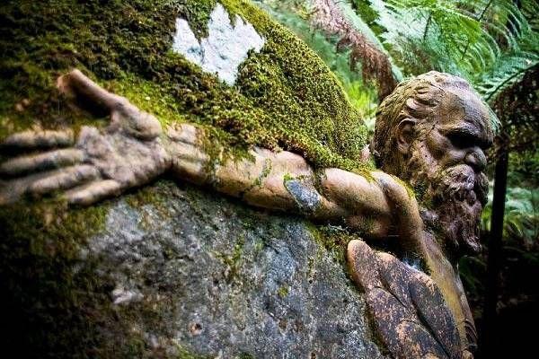 Мистические скульптуры в лесах Австралии 2