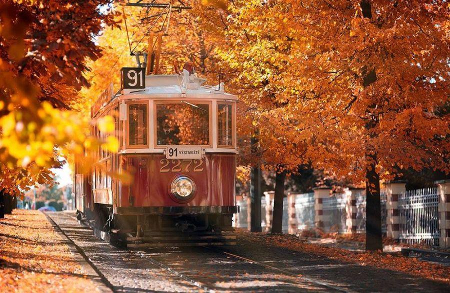 Осенние пейзажи мира 10