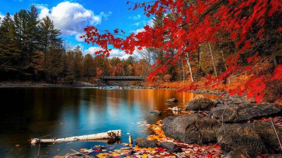 Осенние пейзажи мира 14