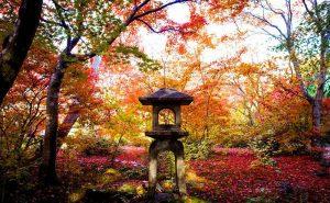Очаровательные осенние пейзажи с разных уголков мира