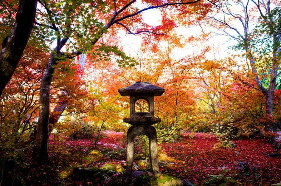 Осенние пейзажи мира 15
