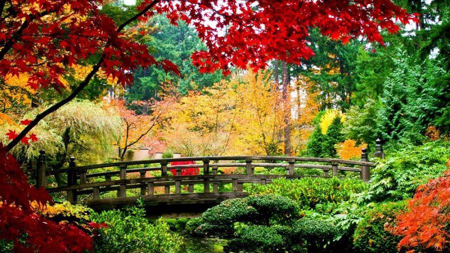 Осенние пейзажи мира 4