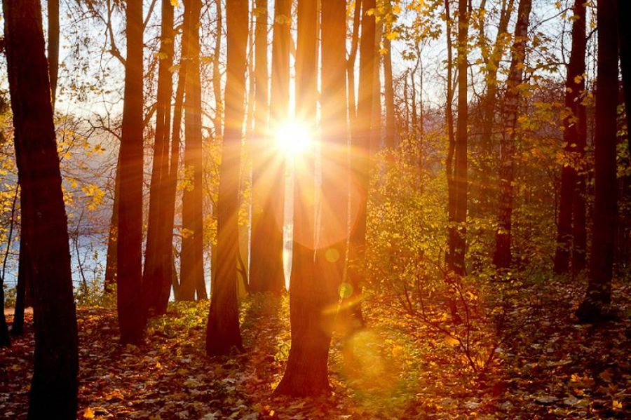 Осенние пейзажи мира 5