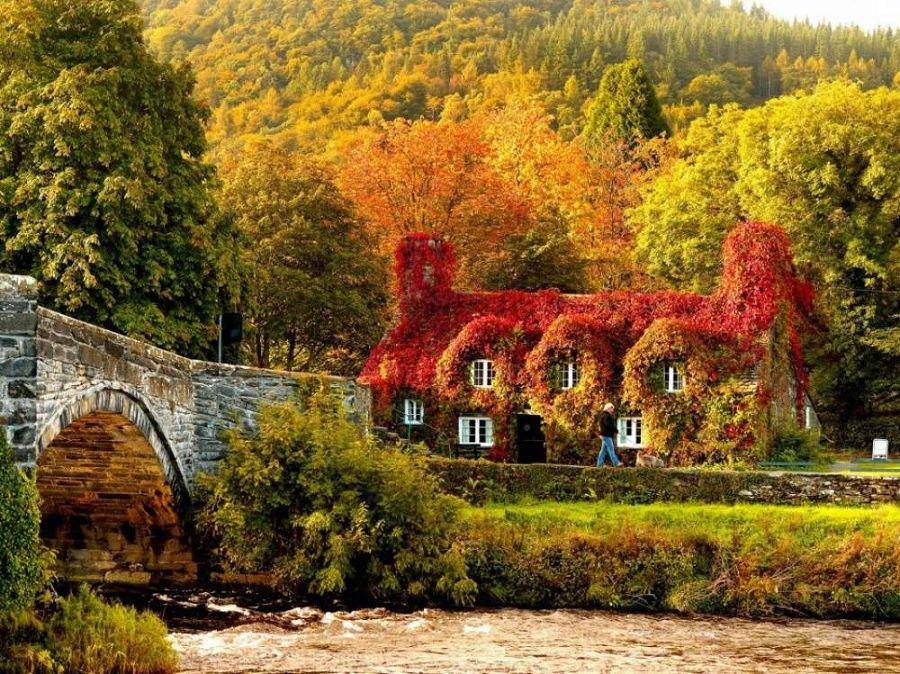 Осенние пейзажи мира 6
