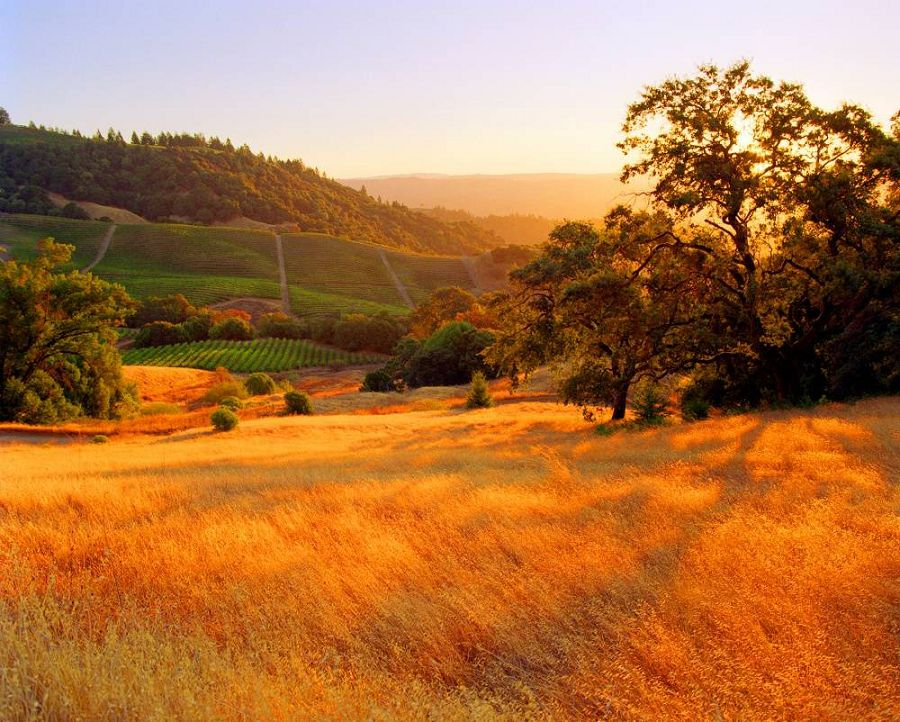 Осенние пейзажи мира 7