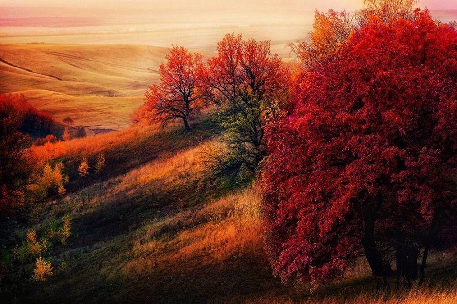 Осенние пейзажи мира