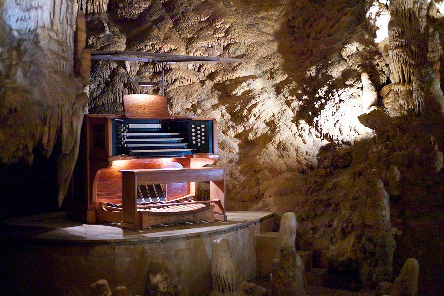 пещерный орган