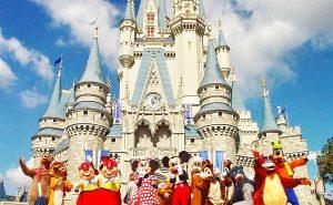 Раритеты Disneyland — торг уместен!
