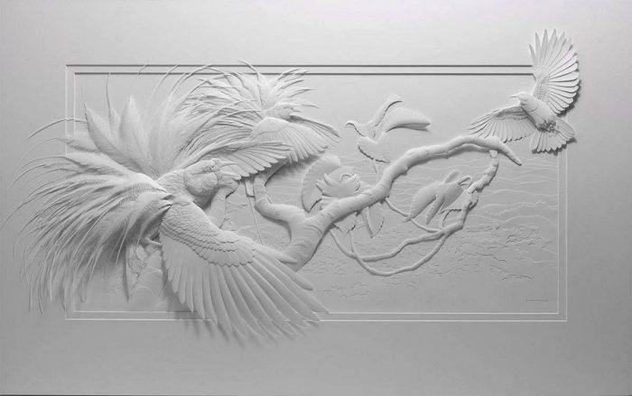 Кэлвин Николлс: белоснежные райские птички