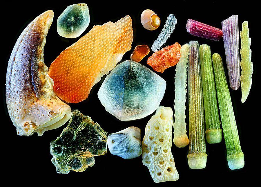 pod microscopom