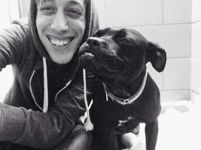 собаки-улыбаки 7
