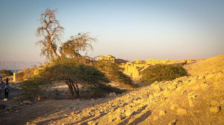 древний город Харире