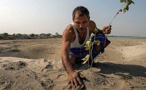 Житель Индии самостоятельно посадил 1360 акров леса