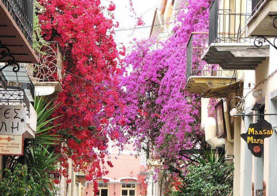 Фотопутишествие по Греции 15