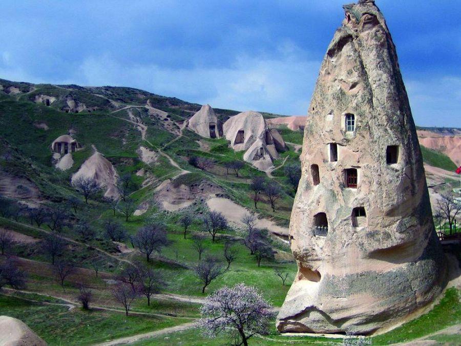 Сказочные дома в гармонии с природой 14