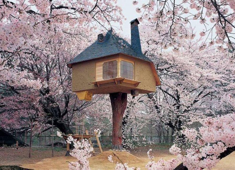 Сказочные дома в гармонии с природой 16