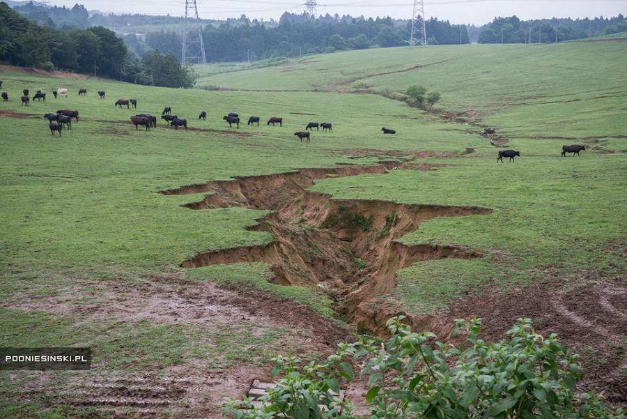 зона отчуждения Фукусимы 16