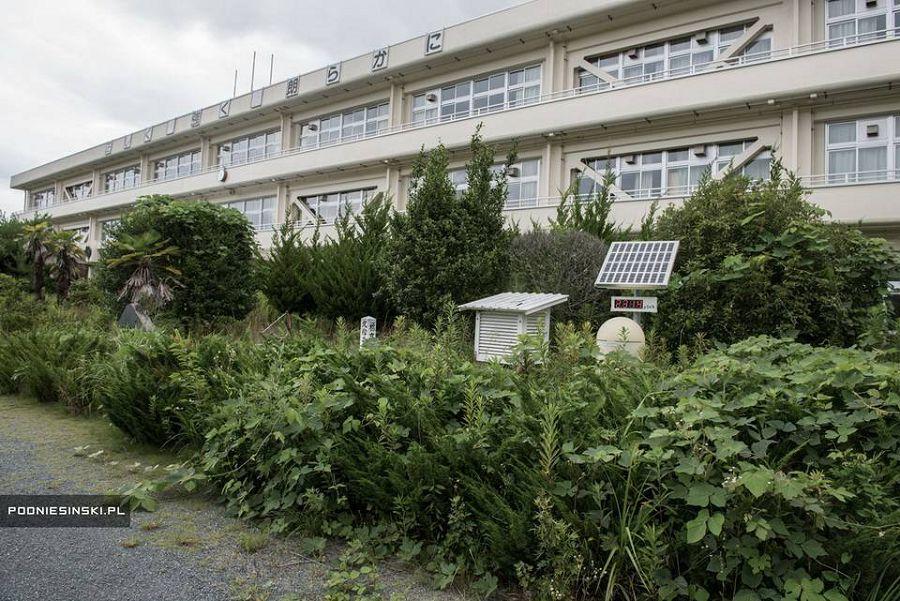 зона отчуждения Фукусимы 24