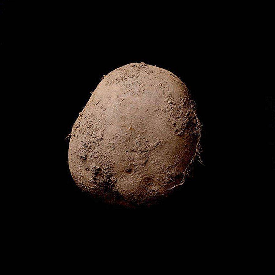 Самый фотогеничный картофель в мире