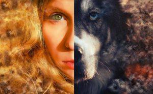 """История о девушке и её """"волке-хранителе"""""""