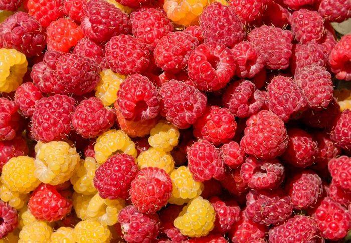 Как цвет еды влияет на наше здоровье