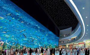 Топ-10 удивительных аквариумов