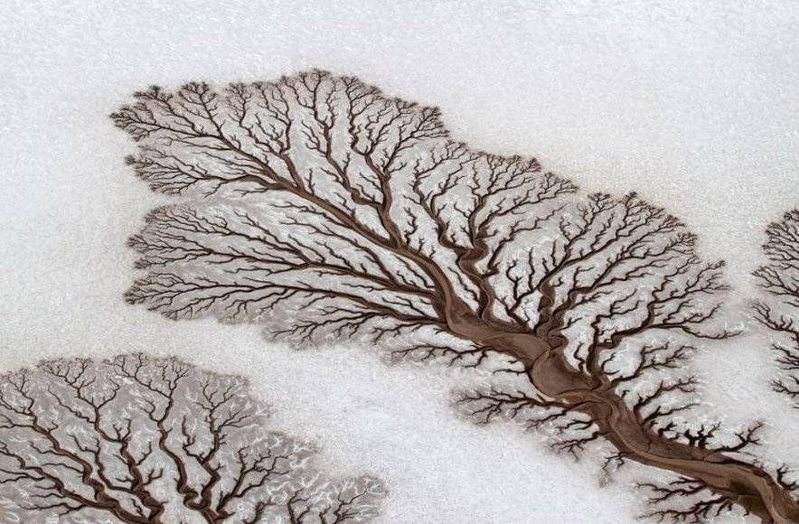 как рисует природа