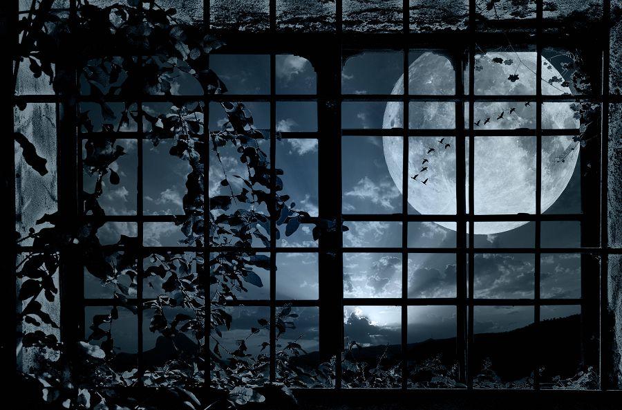 вопиющие случаи лунатизма