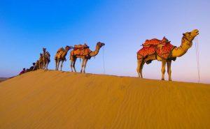 Топ-6 самый интересных пустынь мира