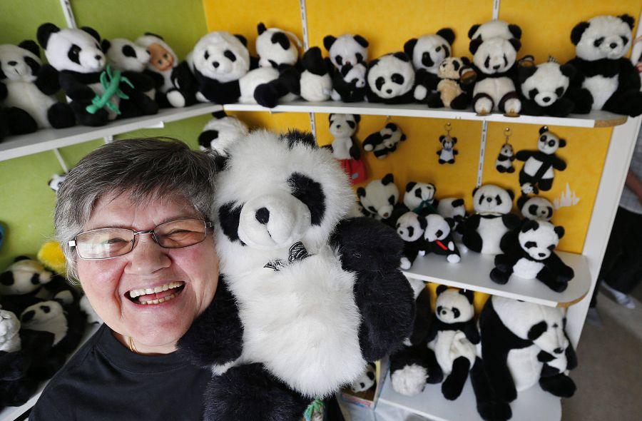 Коллекция плюшевых панд