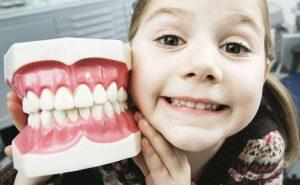 Есть ли молочные зубы у взрослых?