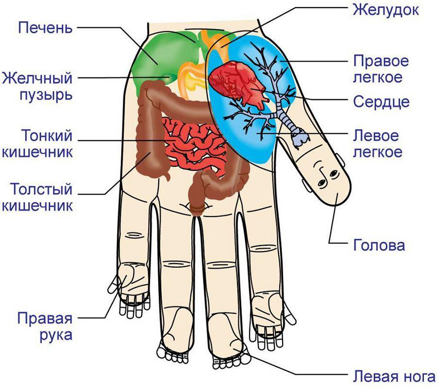 Акупунктура рук