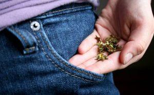 Неопознанные детали: зачем нужны помпоны, карманы и стрелки на одежде