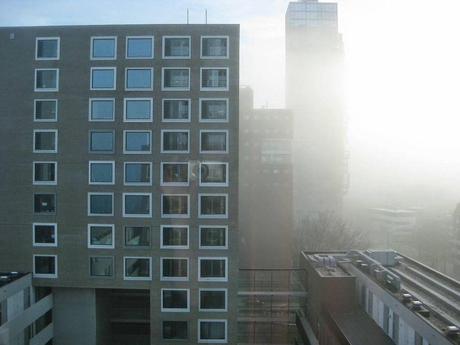 Общежитие в городе Делфт