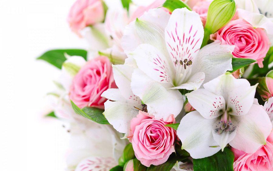 лилии 8 марта