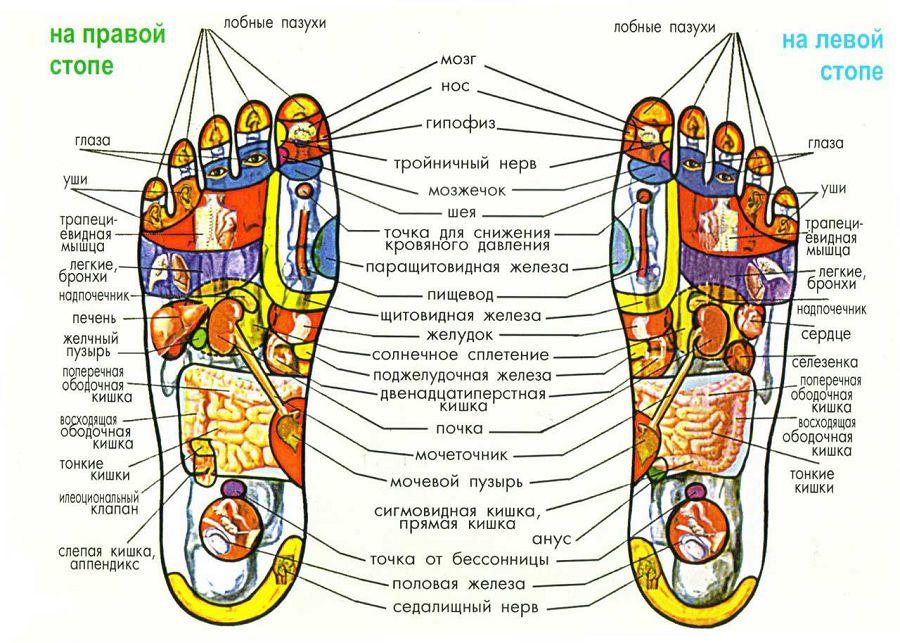 Акупунктура стопы