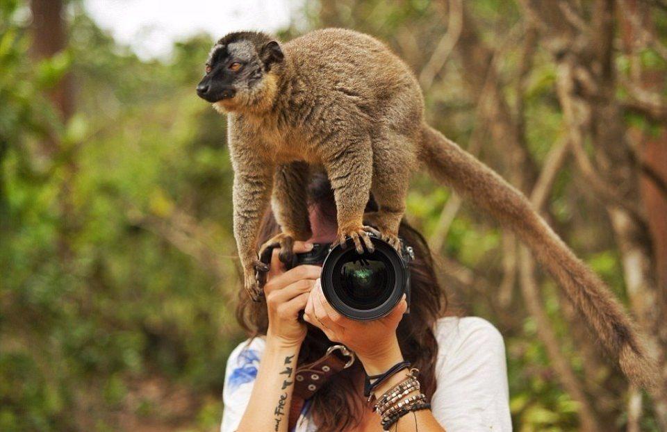 бесстрашные фотографы