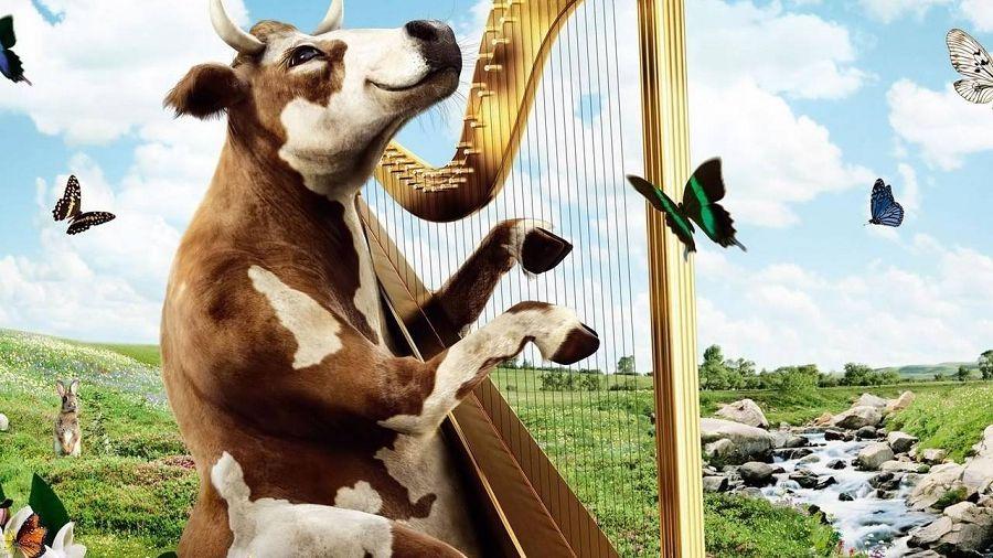 корова играет на арфе
