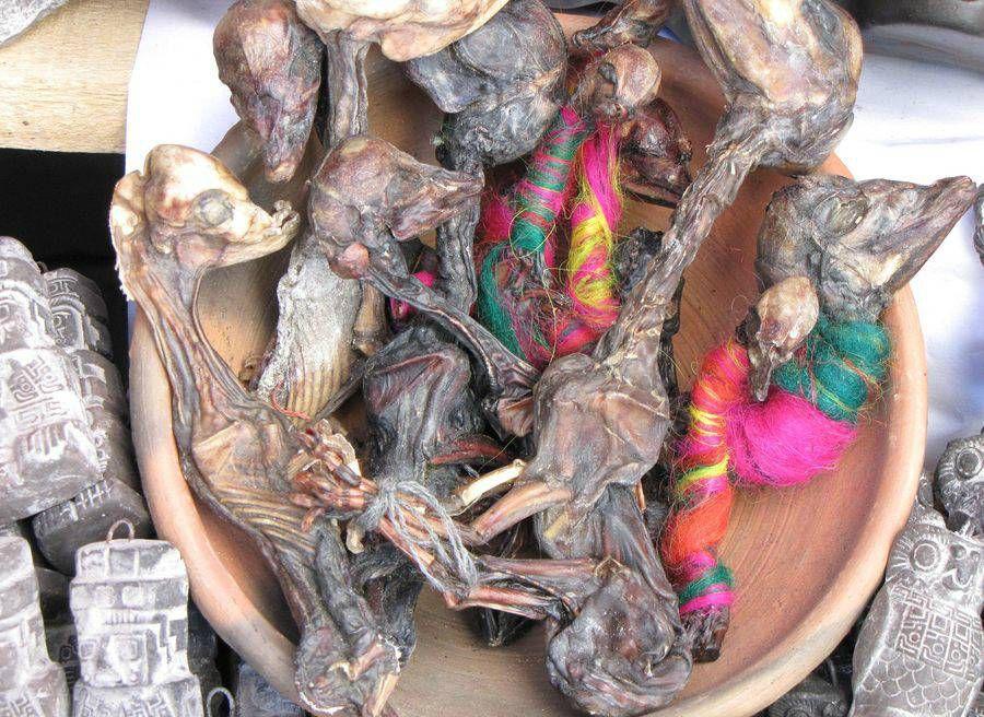Ведьмин рынок в Боливии