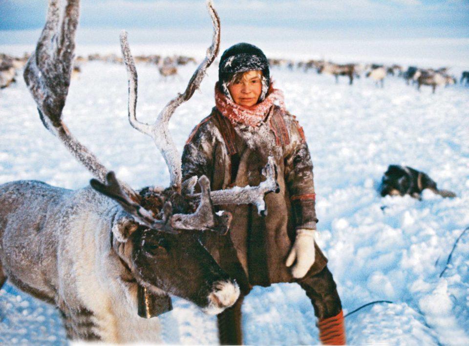 устойчивость к холоду