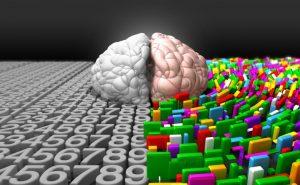 Как развивать полушария мозга