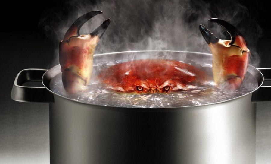 как варить пищу