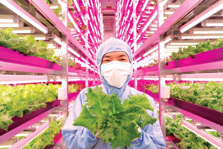 Первая роботизированная сельскохозяйственная ферма