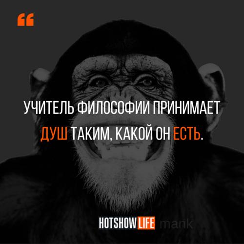 смешные цитаты mank