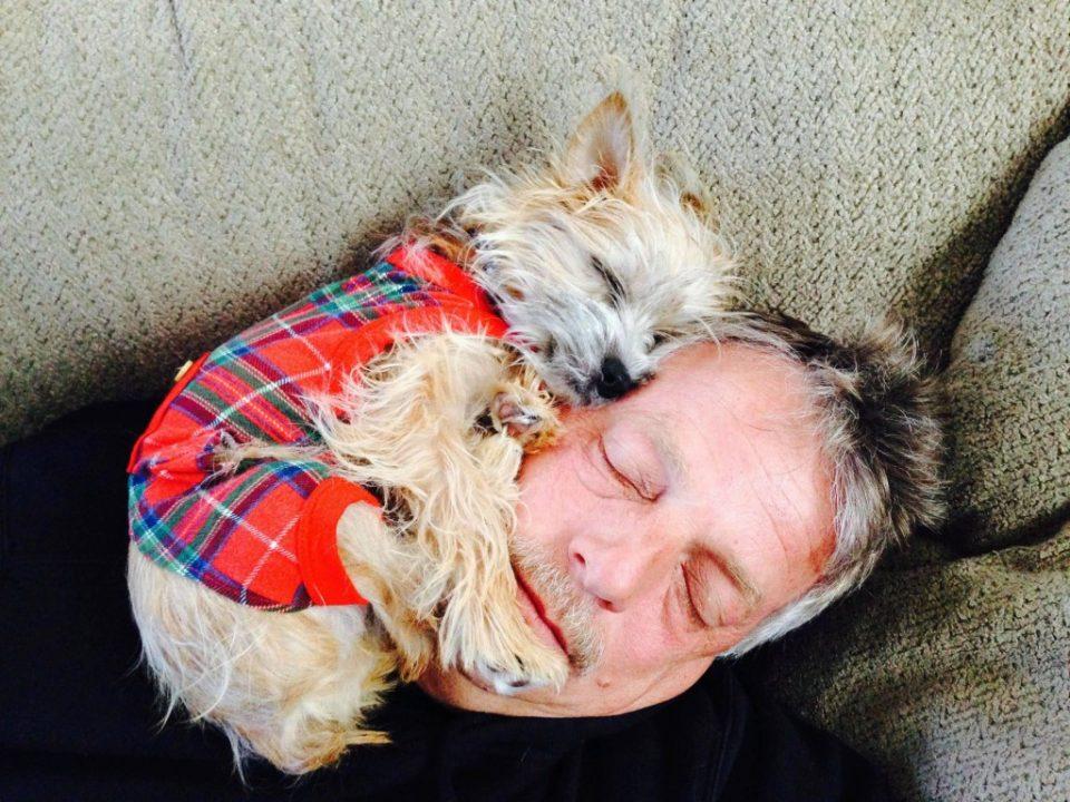 собака спит на хозяине