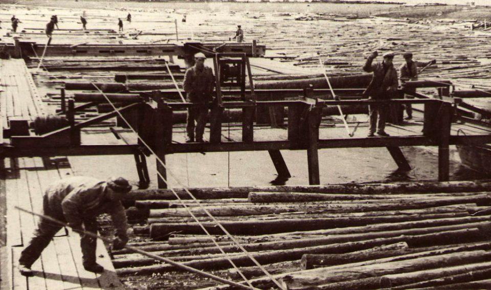 сплавщики леса