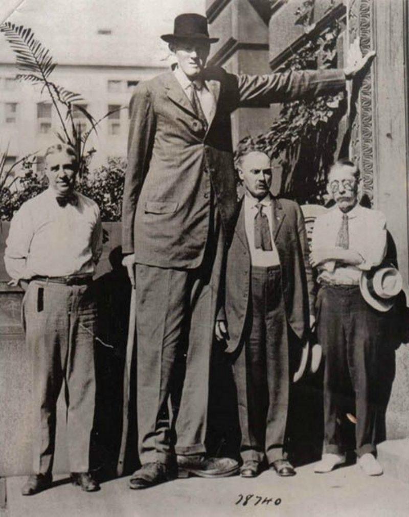 гигант большой человек